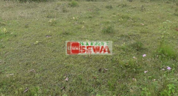 30 ropani 10 aana Attractive  land on sale in Dhading